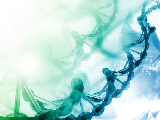 Double-stranded DNA
