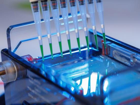 Loading an agarose gel for electrophoresis