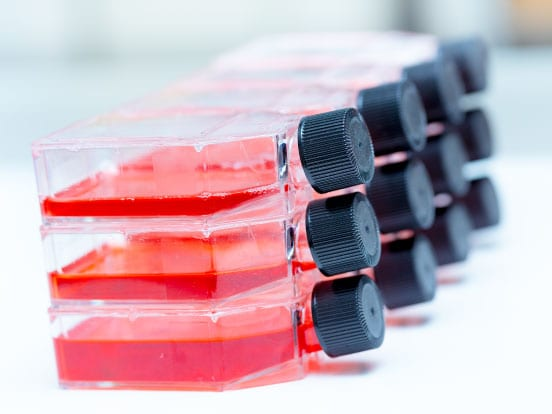 Cell Culture Products & Reagents offered by AMS Biotechnology