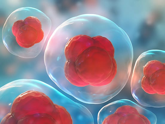 Cell Proliferation and Viability Assay Kits offered by AMS Bio