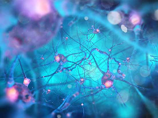 3D Cell Culture & Extracellular Matrices Products from AMS Bio